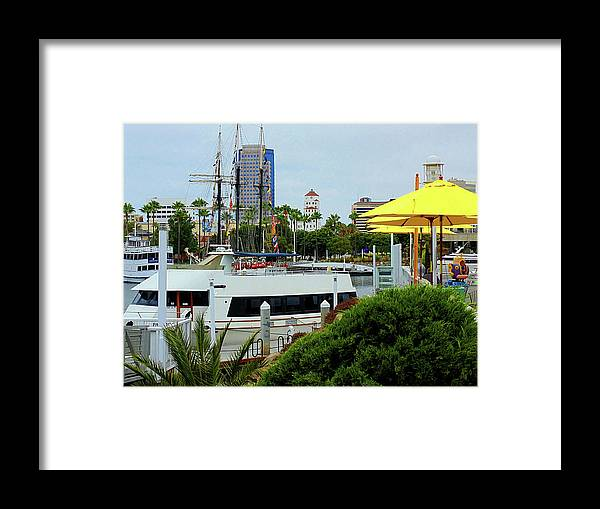 San Diego Pier Framed Print featuring the photograph Lunch At The Pier by Randal Higby
