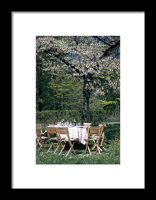 Lunch Framed Print featuring the photograph Lunch by Flavia Westerwelle