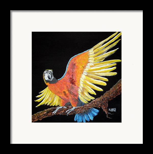 Macaw Framed Print featuring the painting Macaw - Wingin' It by Susan Kubes