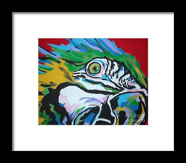 Macaw Framed Print featuring the painting Macaw by Caroline Davis