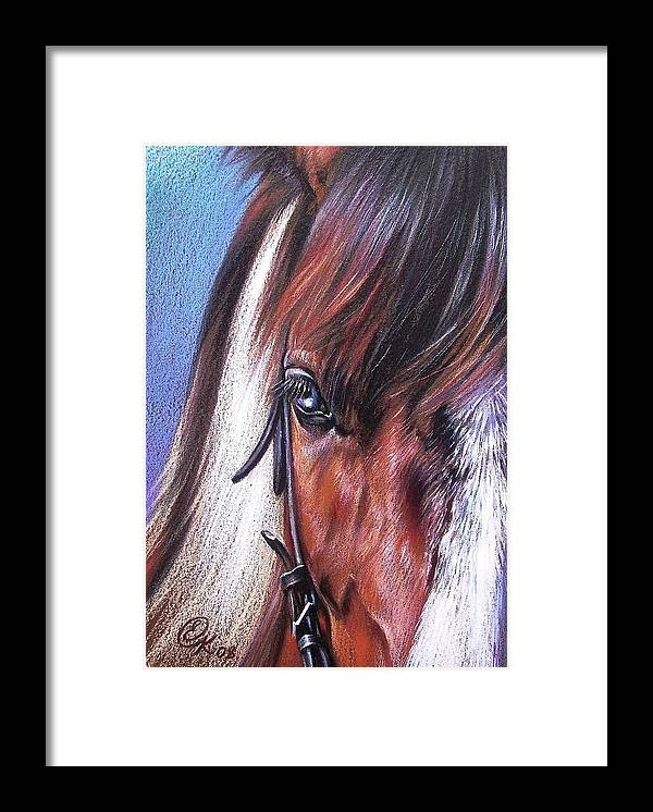 Horse Animal Portrait Drawing Art Framed Print featuring the drawing Magnificent Paint by Elena Kolotusha