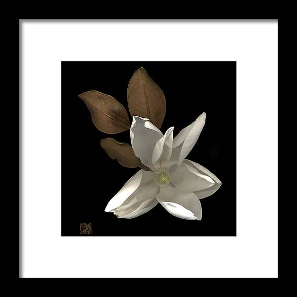 Flower Framed Print featuring the photograph Magnolia by Lloyd Liebes