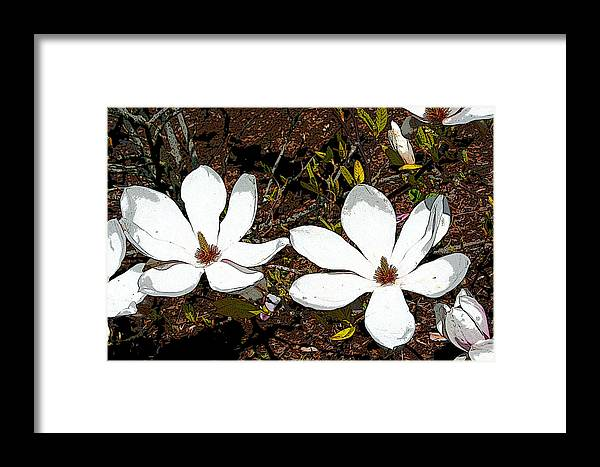 Magnolias Framed Print featuring the mixed media Magnolias Dp3854 by Mary Gaines