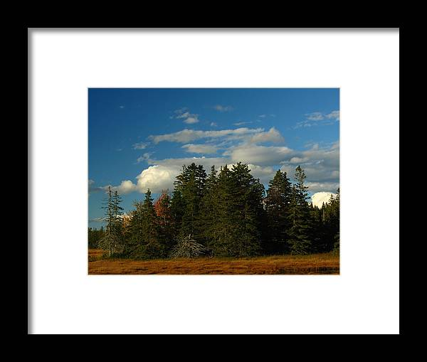 Landscape Framed Print featuring the photograph Maine Landscape Photography by Juergen Roth