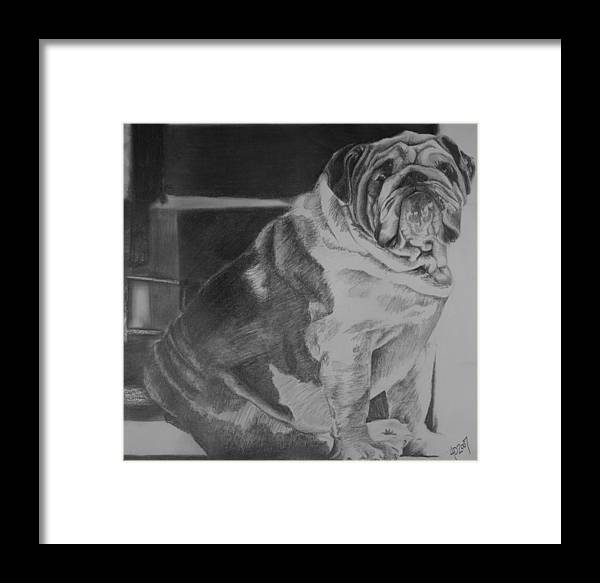 Dog Framed Print featuring the drawing Making Laugh Lines Trendy by Darcie Duranceau