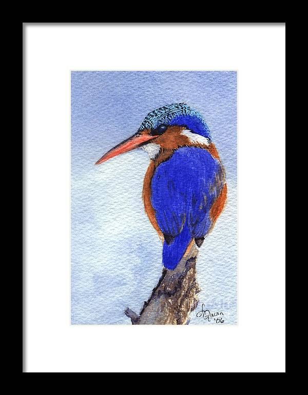Bird Framed Print featuring the painting Malachite Kingfisher by Lynn Quinn