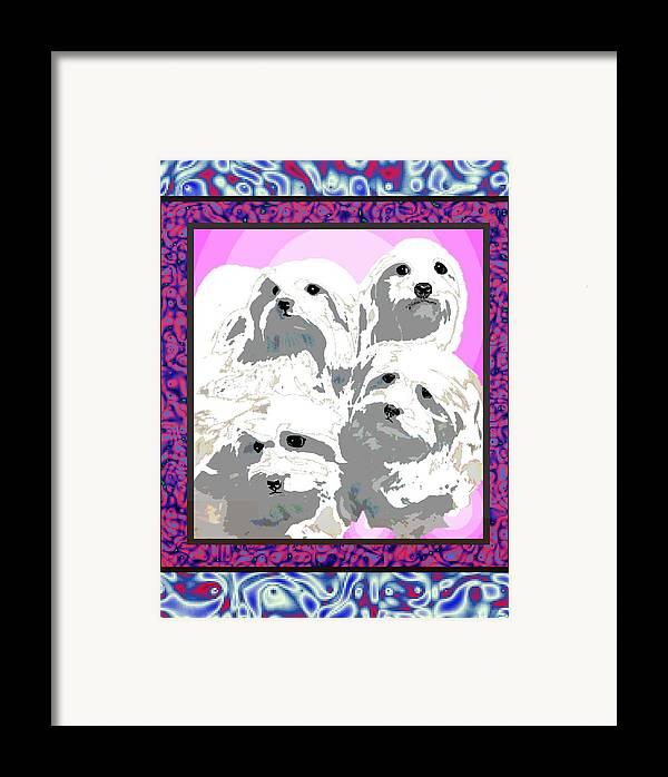 Maltese Group Framed Print featuring the digital art Maltese Group by Kathleen Sepulveda