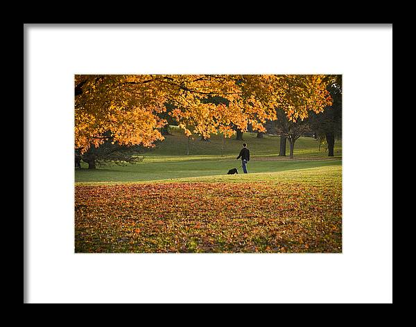 Park Framed Print featuring the photograph Man In The Park by Chad Davis