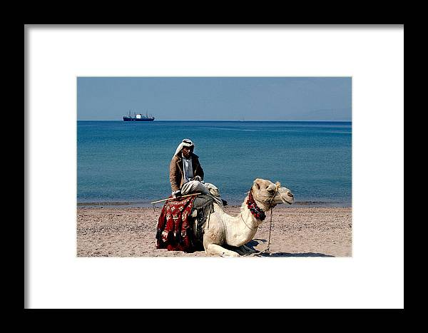 Dromedary Framed Print featuring the photograph Man With Camel At Red Sea by Carl Purcell