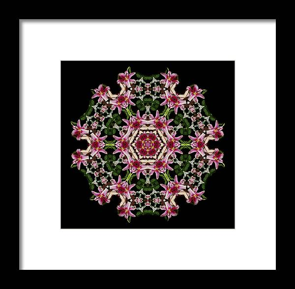 Mandala Framed Print featuring the photograph Mandala Monadala Lisa by Nancy Griswold