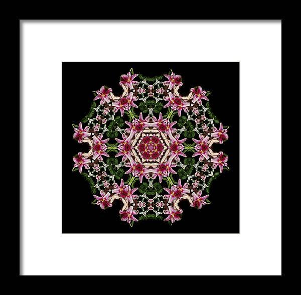 Mandala Framed Print featuring the photograph Mandala Monadala Lisa by Nancy Griswold