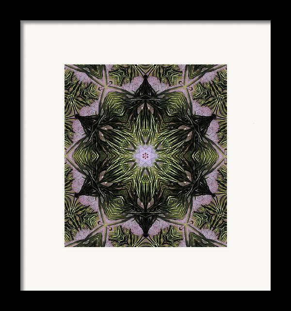 Mandala Framed Print featuring the digital art Mandala Sea Sponge by Nancy Griswold
