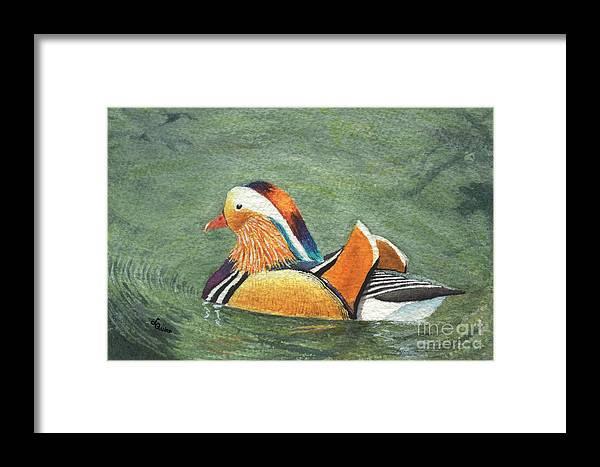 Duck Framed Print featuring the painting Mandarin Duck by Lynn Quinn