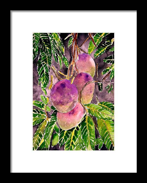 Mango Framed Print featuring the painting Mango tree fruit by Derek Mccrea