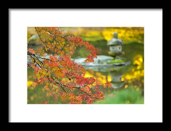 Japanese Garden Framed Print featuring the photograph Maple Colors by Thorsten Scheuermann