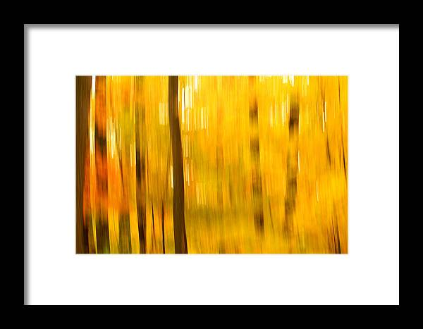 Abstract Photo Framed Print featuring the photograph Maple Magic by Bill Morgenstern