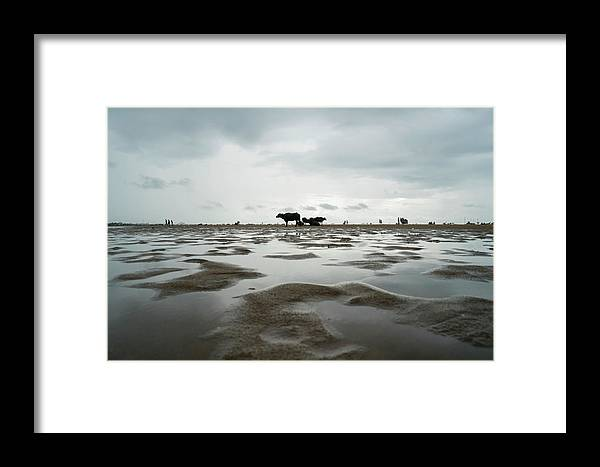 Water Framed Print featuring the photograph Marina Beach, Chennai by Vasanth Kumar