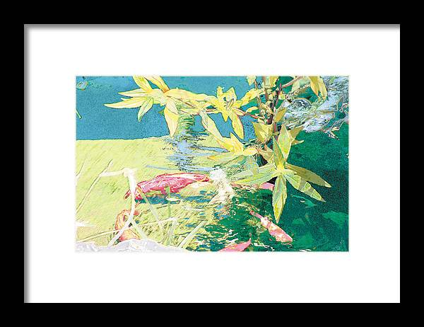 Koi Framed Print featuring the photograph Marry-Go-Round Kio In The Spring-May Day by Judy Loper
