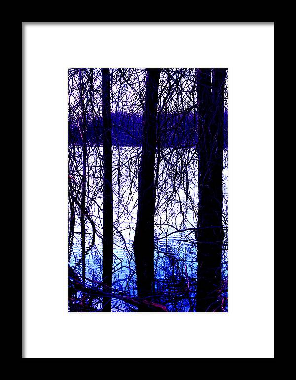 Marsh Framed Print featuring the photograph Marsh by Brian M Lumley