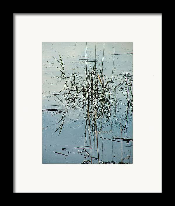 Waterscape Framed Print featuring the photograph Marsh Grass by Donna Thomas