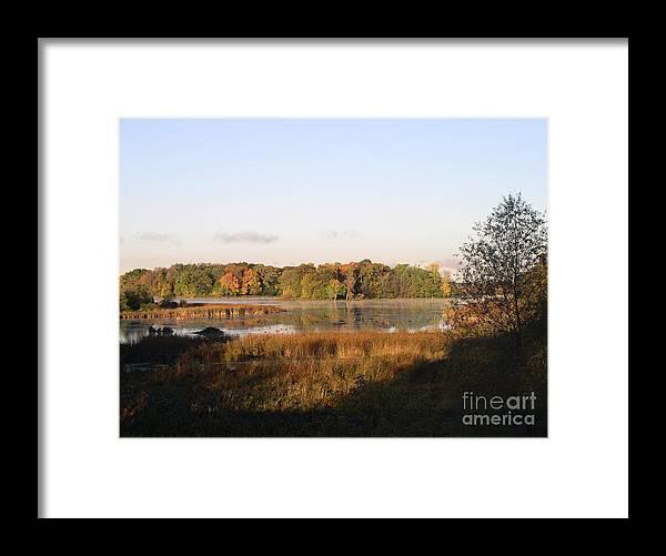 Marsh Framed Print featuring the photograph Marsh Morning by Mendy Pedersen