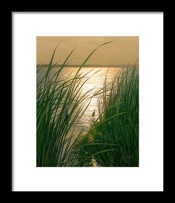 Cape Cod Framed Print featuring the digital art Marsh Sunset by Sue Brehant