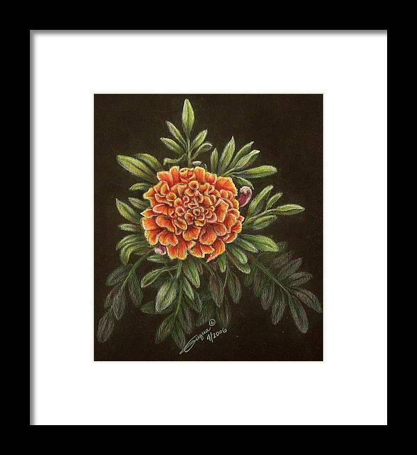 Fuqua - Artwork Framed Print featuring the drawing Marys Gold by Beverly Fuqua