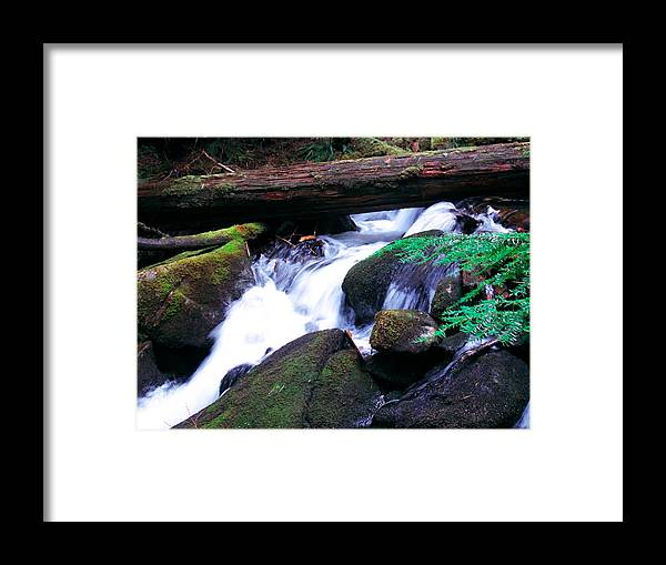Creek Framed Print featuring the photograph Mason Creek by Kenneth Willis