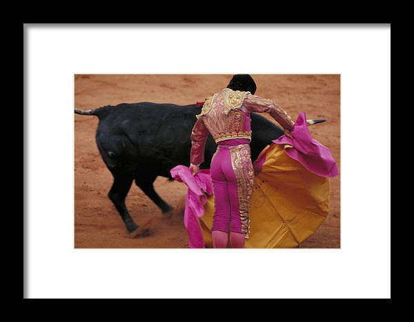 Fight Framed Print featuring the photograph Matador And Bull by Carl Purcell