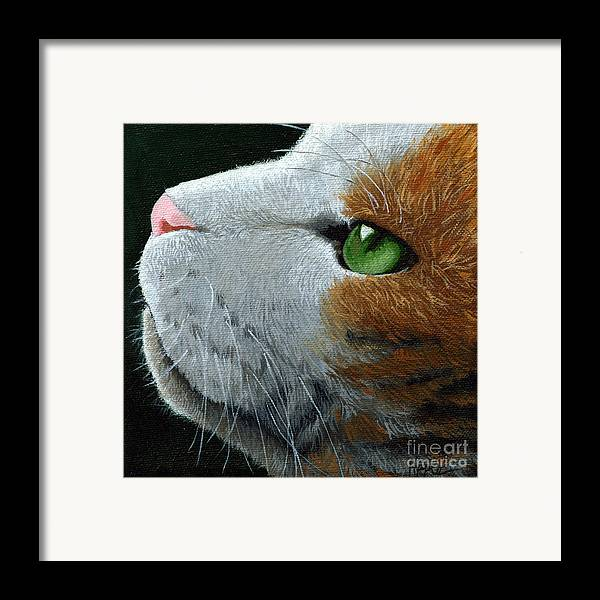 Cat Portrait Framed Print featuring the painting Max - Neighbor Cat Painting by Linda Apple