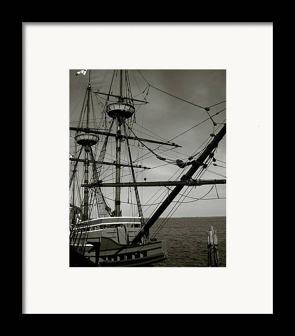 Mayflower Framed Print featuring the photograph Mayflower by Heather Weikel