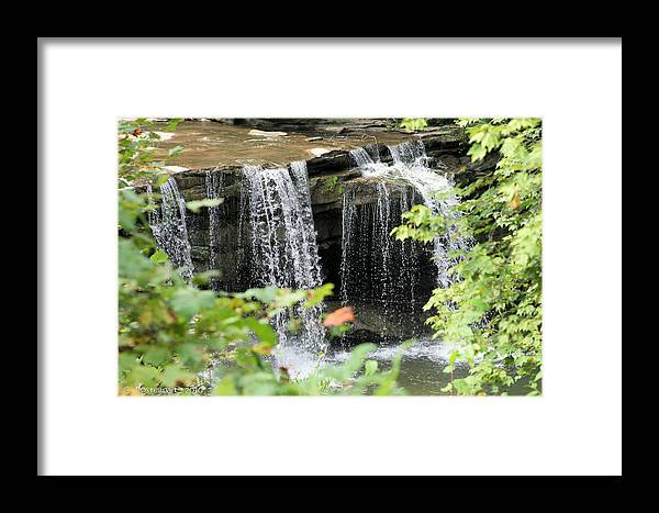 Birch River Framed Print featuring the photograph Mccoy Falls From The Road by Carolyn Postelwait