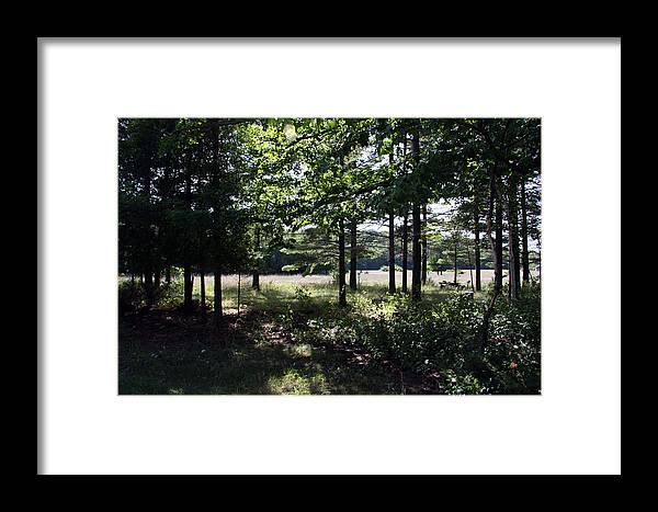 Landscape Framed Print featuring the photograph Meadow Beyond by Joanne Coyle