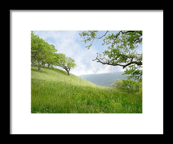 Landscape Framed Print featuring the photograph Meadow View Spring by Karen W Meyer