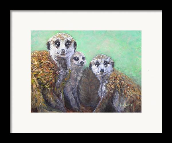 Meerkats Framed Print featuring the painting Meerkat Family by Sue Linton