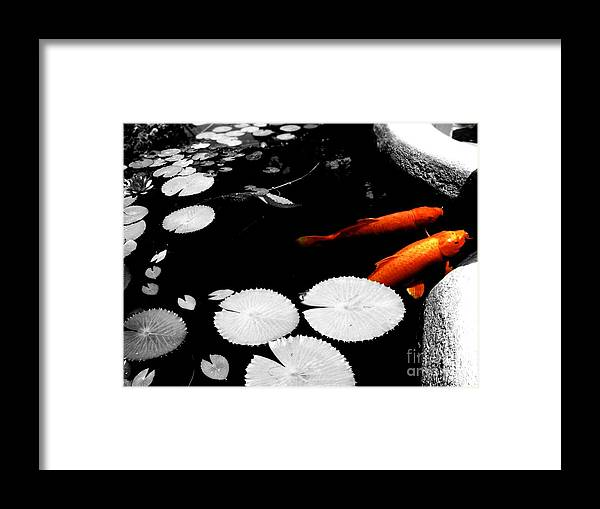 Koi Framed Print featuring the photograph Meeting Of The Koi by Nicole Terrell