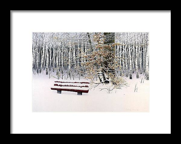 Woodland Framed Print featuring the painting Memories Of Birchtrees by Conrad Mieschke
