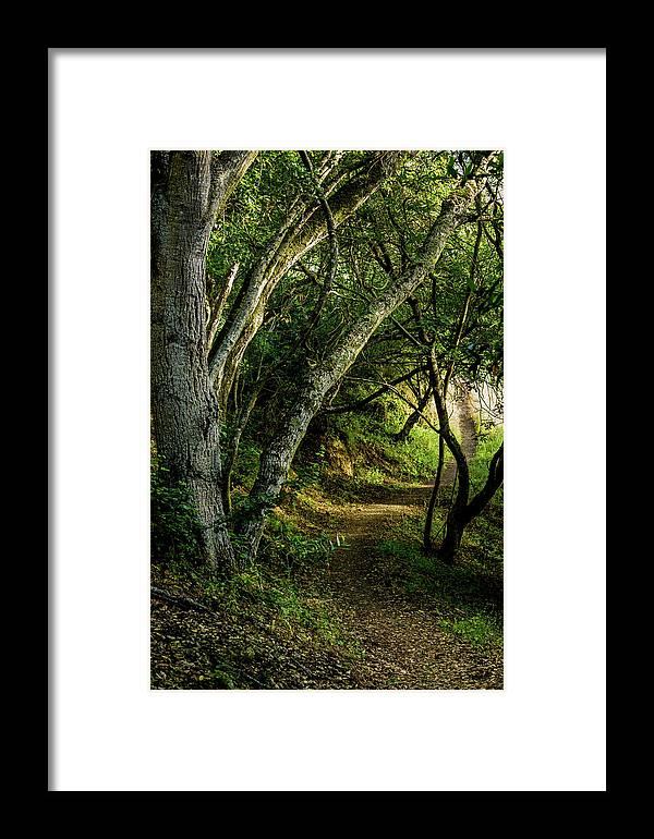 Mendoza Trail Framed Print featuring the photograph Mendoza Trail by Joe Azevedo