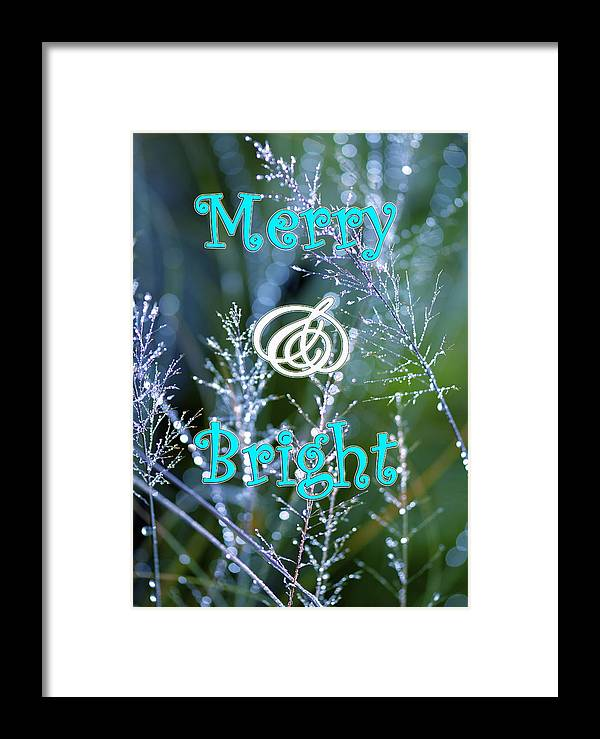 Christmas Card Framed Print featuring the photograph Merry And Bright by Lauren Medina
