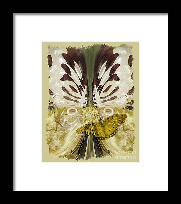 Butterfly Framed Print featuring the digital art Metamorphosis by Chuck Brittenham