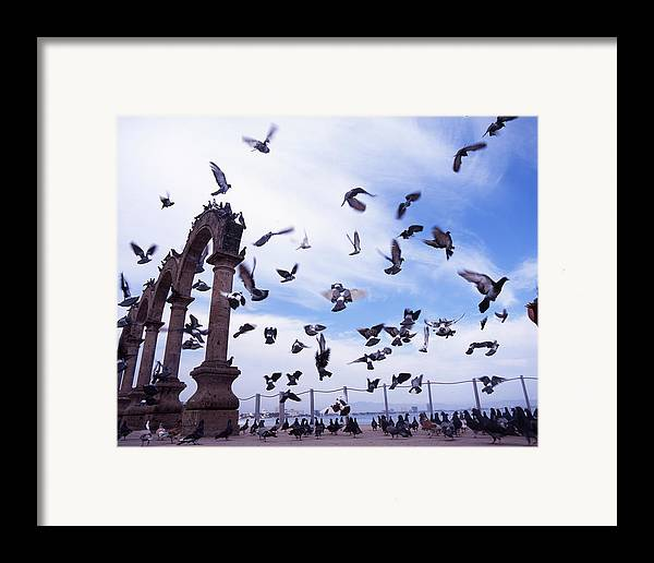 Photography Framed Print featuring the photograph Mexican Pigeon Ruins by Benjamin Garvey