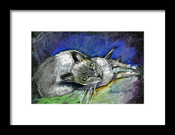 Cat Framed Print featuring the pastel Michael Campbell by Suzanne Blender