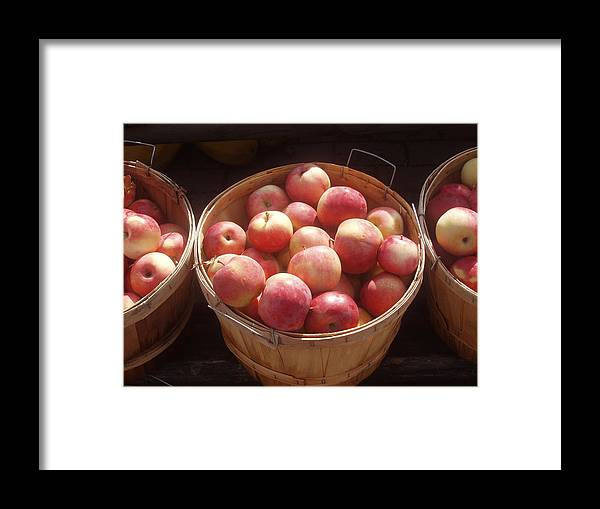 Apples Framed Print featuring the photograph Michigan Apples by Wayne Potrafka