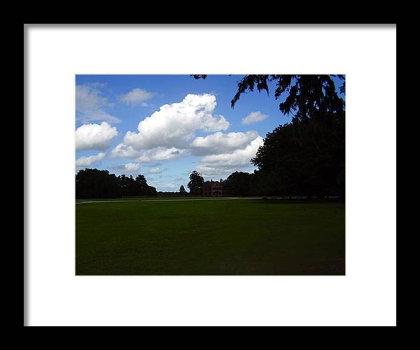 Middleton Place Framed Print featuring the photograph Middleton Place by Flavia Westerwelle