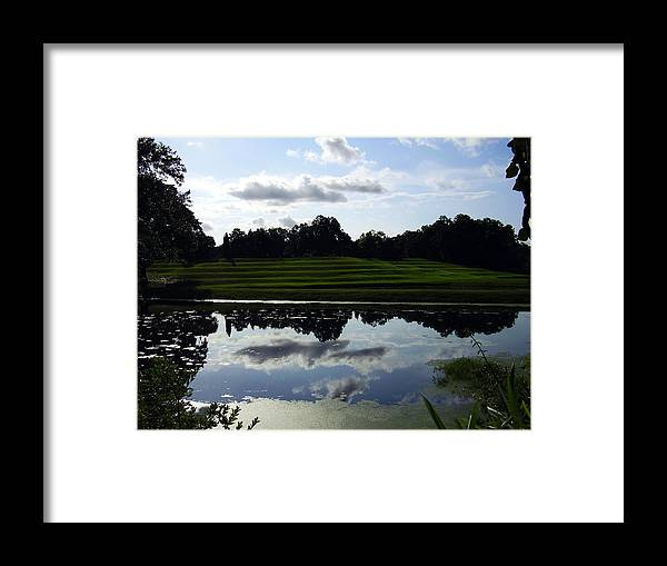 Middleton Place Framed Print featuring the photograph Middleton Place II by Flavia Westerwelle