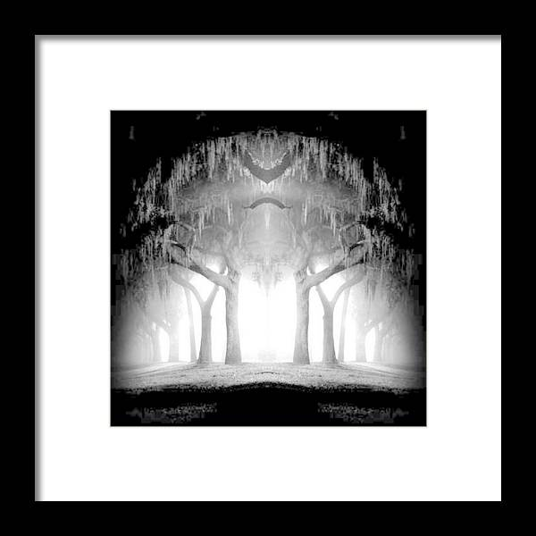 Trees Framed Print featuring the photograph Midnight In My Mind by Vicki Lynn Sodora