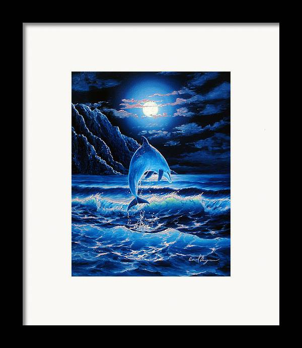Dolphin Framed Print featuring the painting Midnight Play by Daniel Bergren