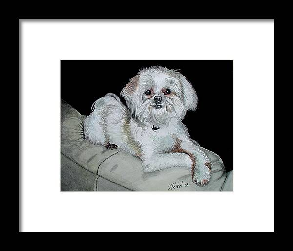 Dog Framed Print featuring the painting Miki Dog by Ferrel Cordle