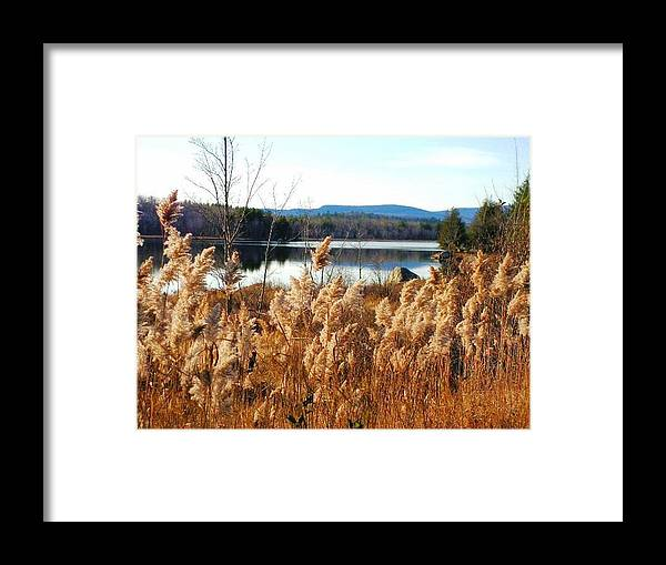 Photography Framed Print featuring the photograph Millinocket Lake by Katina Cote
