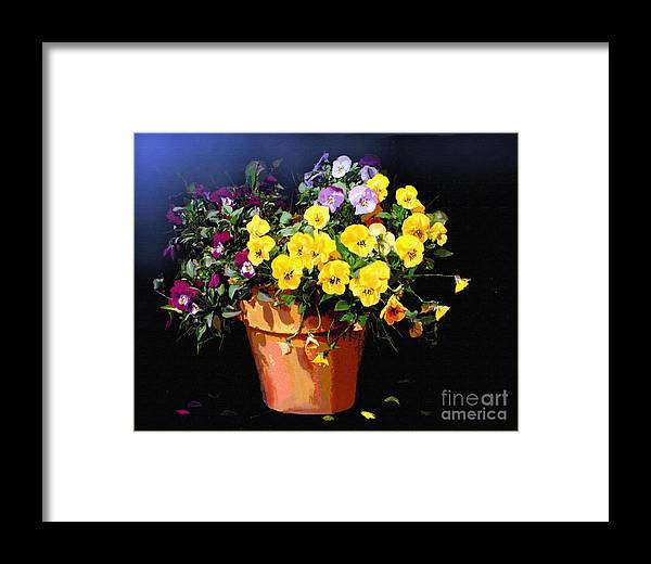 Pansy. Still Life Framed Print featuring the painting Mini Pansy Pot by Robert Foster